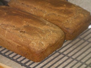 Teff Sandwich Bread